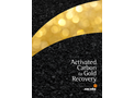 Activated Carbon for Gold Recovery - Applications Brochure