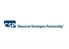CSP Consulting Services