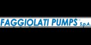 Faggiolati Pumps S.p.A.