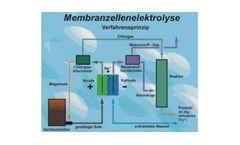 Chlorine Electrolysis
