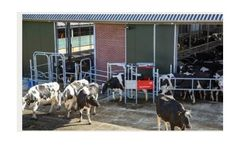 Grazeway - Automatic Milking System
