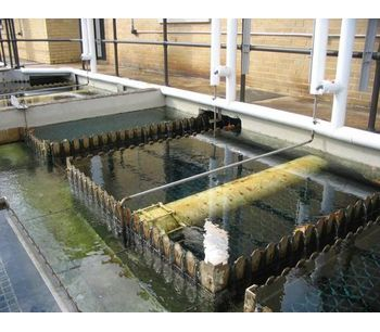 Algae control products for industrial and municipal applications - Water and Wastewater - Water Treatment