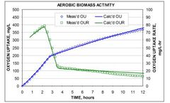Oxygen monitoring from aerobic and anaerobic for biomass activity tests