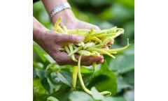 Magic Gro Super - Plant Microbiome Enhancing Biostimulant for Foliar Spray