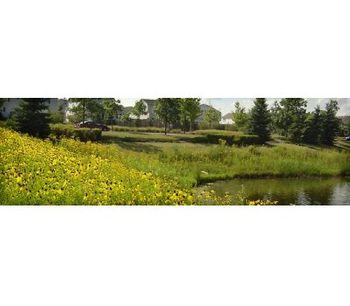 Nurture Native Plant Landscapes