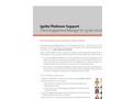 Client Engagement Manager Brochure