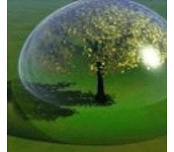 Billion tree campaign grows past 3 billion mark, says UN agency