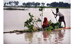 UN-backed forum to study climate forecasting and sustainable farming