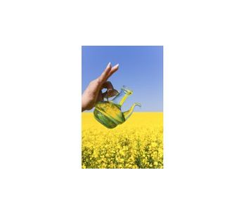 Environmental technology for edible oil industry - Oil, Gas & Refineries - Oil