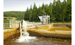 Chemical metering for the wastewater industry