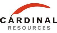 Cardinal Resources LLC