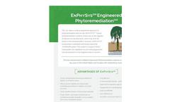 TreeWell - Engineered Phytoremediation System Brochure