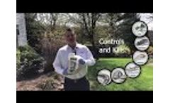 Niban Quick Tutorial (Spring Baiting) - Video