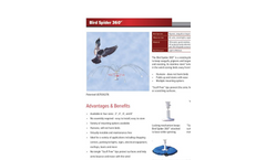 Bird Spiders Brochure