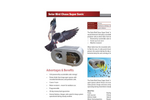 Bird Chase Super Sonic Brochure