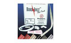 Bird Jolt - Flat Track Kit