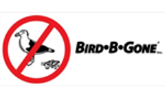 What Pest Birds are Protected?