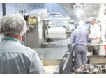 Facing hazards in the fast-paced food industry
