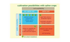 Cultivation : From Saline Soil To Greenhouse