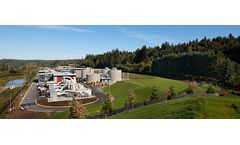 Water treatment solutions for municipal applications