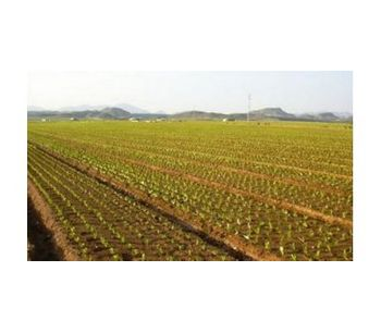 Water filtration systems for sub-surface drip irrigation - Agriculture - Irrigation
