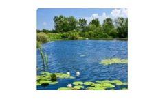 Algae control in ponds