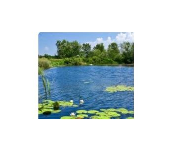 Algae control in ponds - Water and Wastewater