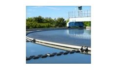Algae control in water treatment plants