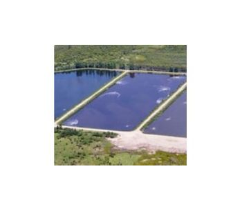 Algae control in wastewater lagoons - Water and Wastewater