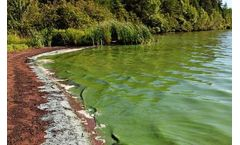 Algal Blooms - Monitoring, warning and control