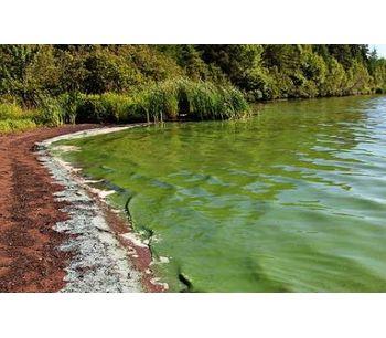 Algal Blooms - Monitoring, warning and control