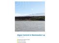Algae Control in Wastewater Lagoons - Brochure