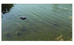 LG Sonic - Model e-line - Solution for Controlling Algae in Ponds