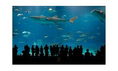 Water treatment solutions for the aquaculture & aquariums industry