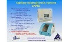 Webinar: Analysis of Recombinant Protein Purity and Heterogeneity by Capillary Electrophoresis - Video