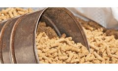 Odor control for the poultry feed production