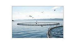 Ozone generators for aquaculture applications