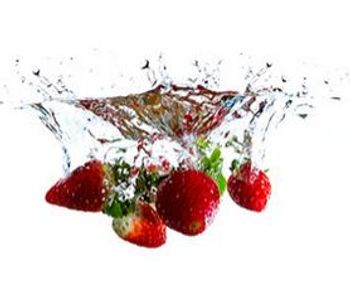 Ozone generators for food & beverage safety applications - Food and Beverage