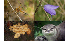 Biodiversity - a bigger threat than climate change - Does anyone care?