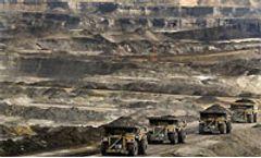 Alberta oil sands' impact on wildlife