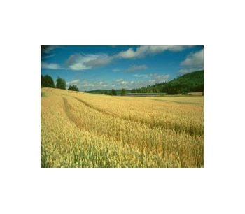 Agro Energy Consultancy For Biofuels