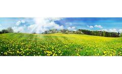 Biological Soil Remediation Services