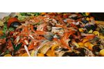 Municipal wastewater solutions for food waste management sector - Food and Beverage - Food