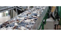 Industrial wastewater solutions for seafood processing sector