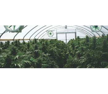 Industrial process solutions for marijuana plant waste sector - Waste and Recycling - Waste Management