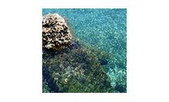 Seawater Desalination Service