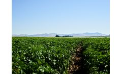 LIVE WEBINAR - Soil Electrical Conductivity: Managing Salts for Sustained High Yields
