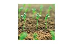 Model Phyto-Zyme - Bio-Catalytic Soil Conditioner & Nutrient Optimization