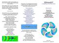 3DynaFS Brochure