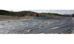 Toxicity assessment of free form of heavy metals in aqueous media on earthworm <italic>Eudrillus eugeniae</italic>